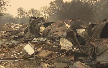 Legal marijuana farms burned in California fires